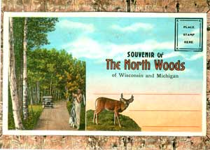 Souvenir of the North Woods of Wisconsin and Michigan [postcards]. E. C. Kropp.