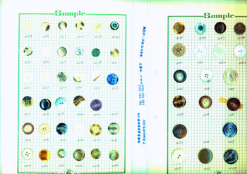 Sample Button Collection. Ltd Fang Mei Button Industrial Co.