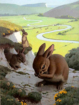 Rabbits with a pastoral valley below. Edward Osmond.