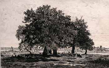Group of Oaks in the Forest of Fontaine-bleau. (First edition of the etching.). Th. Rousseau, Delauney, Artist, Engraver.
