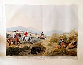 Hog-Hunters meeting by Surprise on a Tigress & her Cubs. Plate 4 from the Second Elephant Folio edition of ORIENTAL FIELD SPORTS : being a complete, detailed, and accurate description of the WILD SPORTS OF THE EAST. Samuel Howett, Thomas Williamson, Artist -, Author -.