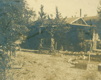 Black and white photograph of house surrounded by small trees. 20th Century American Photographer.
