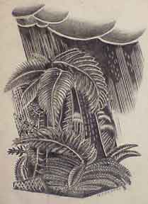 Tropical Landscape In Rain. H. Connell