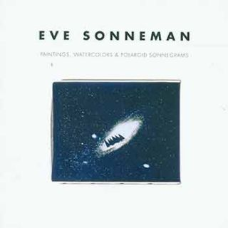 Eve Sonneman. David Cohen, Introduction