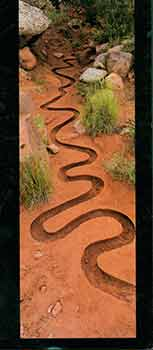 Andy Goldsworthy: River. A Site Specific Installation and Photographs at Haines Gallery. October...