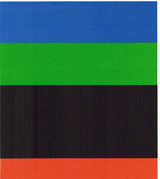 Prospectus for Ellsworth Kelly Drawings, Collages, Prints by Diane Waldman. Ellsworth Kelly