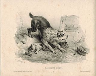 La bonne Mère. [Dog protecting her puppies]. Victor Adam