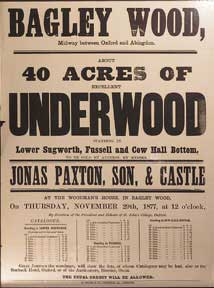 About 40 Acres of Excellent Underwood. Bagley Wood, between Oxford and Abingdon [original...