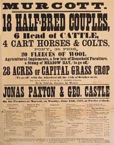 18 Half-Breed Couples, 6 Head of Cattle, Horses, Colts, Pony, Pigs, Fleeces of Wool. Murcott...