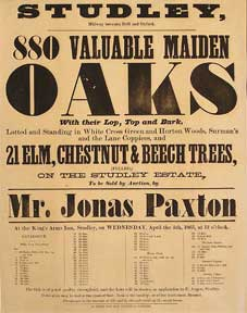 880 Valuable Maiden Oaks, and Elm, Chestnut, and Beech Trees. Studley, Midway between Brill and...