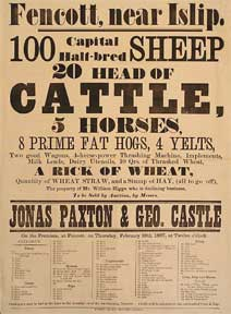100 Capital Half-bred sheep, 20 Head of Cattle, 5 Horses, 8 Prime Fat Hogs, 4 Yelts. Fencott,...