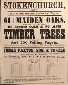 61 Valuable Maiden Oaks; Oak, Ash Timber Trees (Felled) and 800 Felling Fagots. Stokenchurch,...