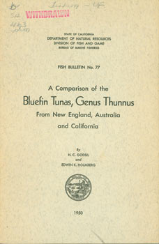A Comparison of the Bluefin Tunas, Genus Thunnus From New England, Australia and California. Fish...