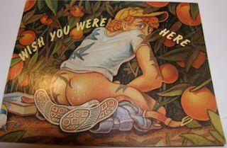 Wish You Were Here. A Rude Post Card. Rude Graphics, Richard Hernandez, NY Hudson, illustr