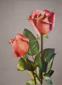 Only a rose... (960 - 961). Inc Donald Art Co